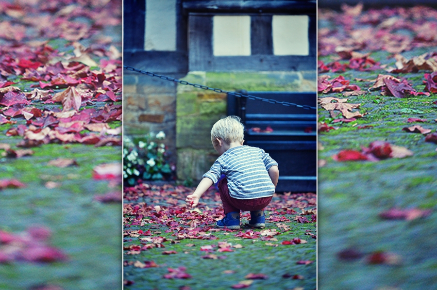 on location photography hever castle with lovely 2 year old beau playing with petals in the courtyard