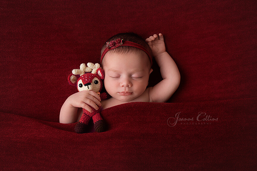Baby Photographer Bromley 11 days new baby with reindeer
