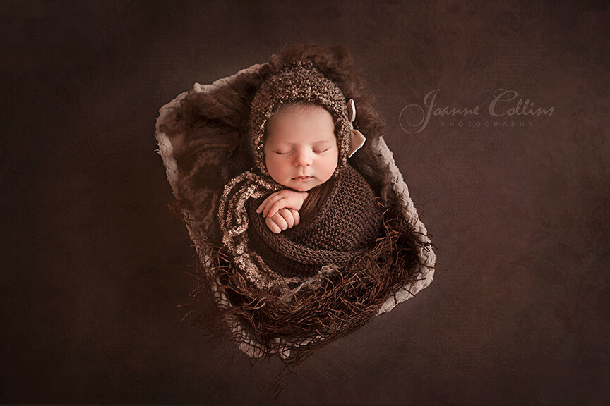 newborn photo of baby girl 8 days in chocolate browns